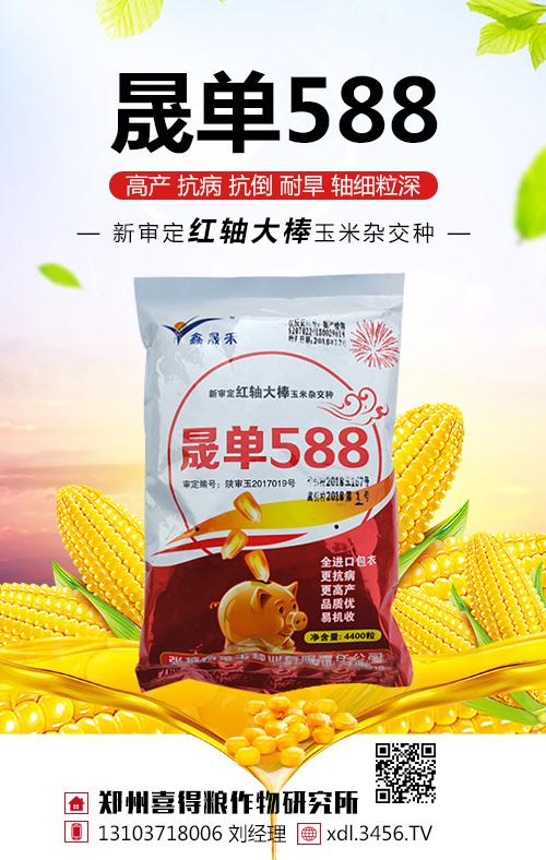 晟单588玉米种怎么样?适宜在哪里种植?